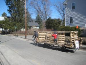 Moving newly constructed compost bins